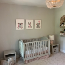 Baker Family Nursery 4